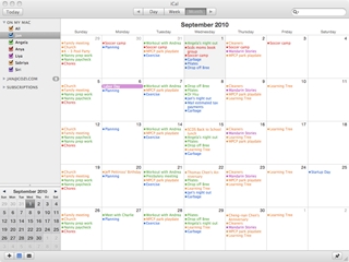 Apple iCal Month View