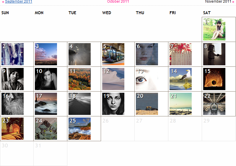 Flickr Interestingness Calendar